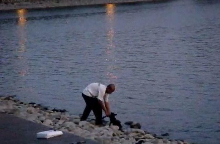 img 59c0b231ef100.png - 邪魔だったと言い、ノラ犬を「川の中に」投げ捨てた男性