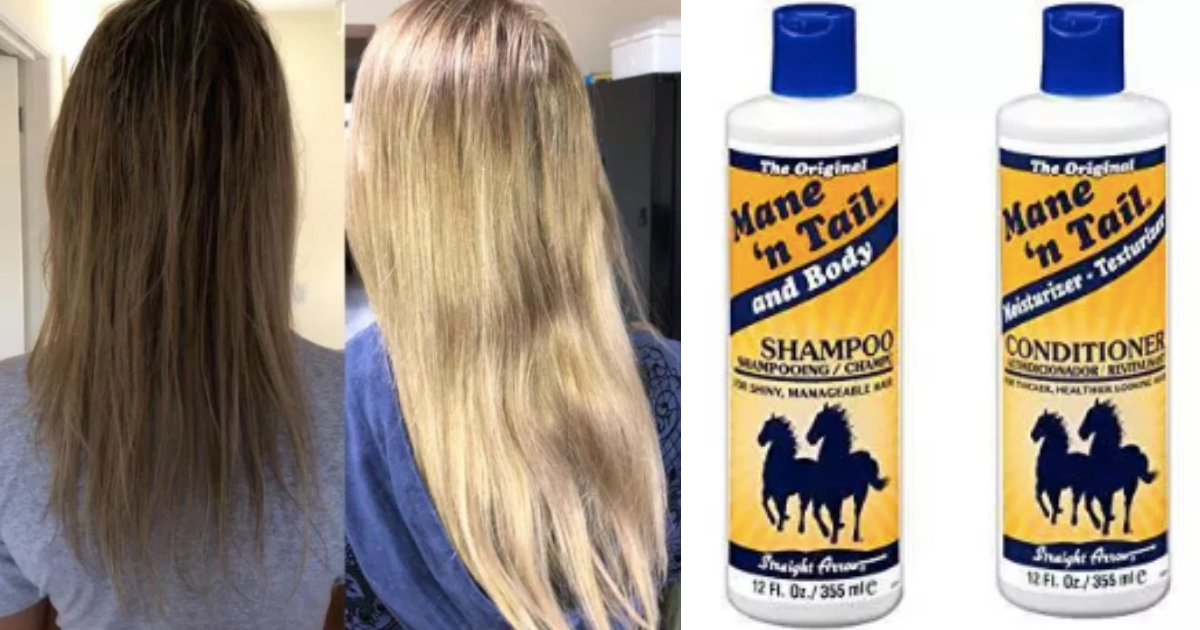 y2 12.png - This Horse Shampoo Has More Than 1000 Reviews on Amazon