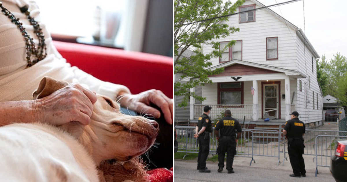 police2.png - A Teenager Broke Into 80-Year-Old Woman's Home And Attacked Her Small Dog While She Was Asleep