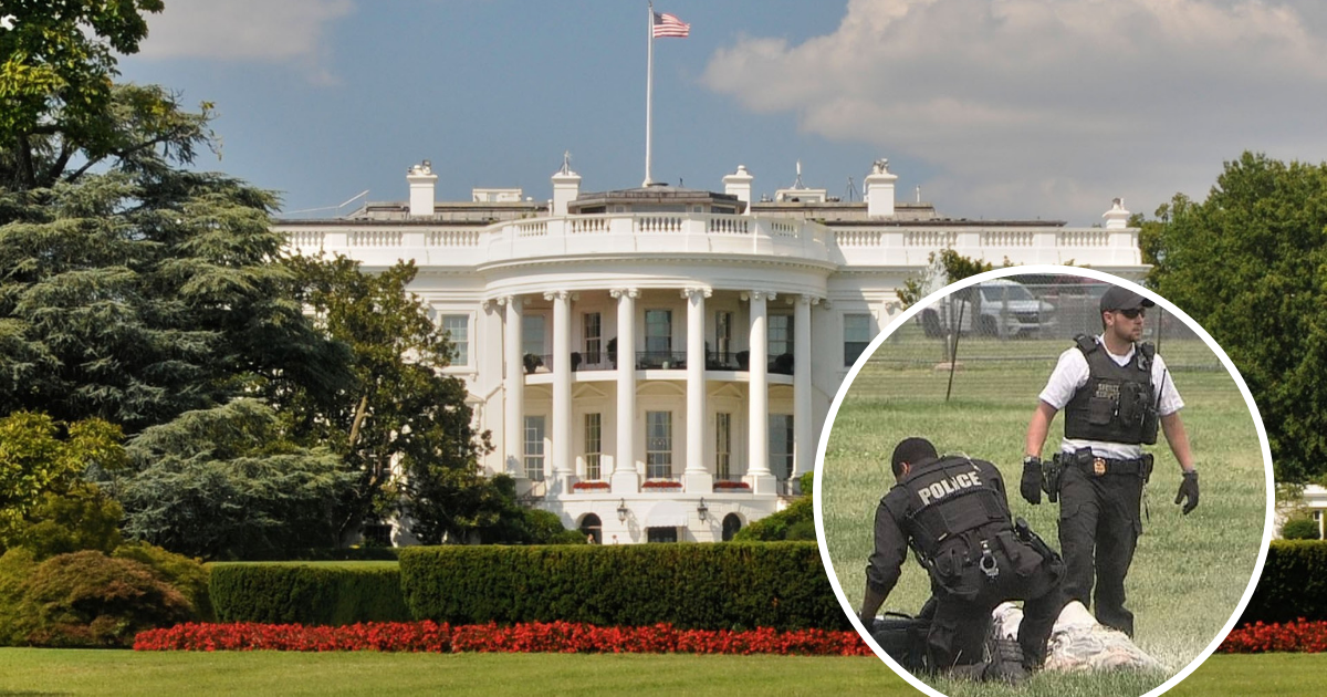untitled design 48 1.png - Man Set Himself On Fire And Casually Walked Around The White House
