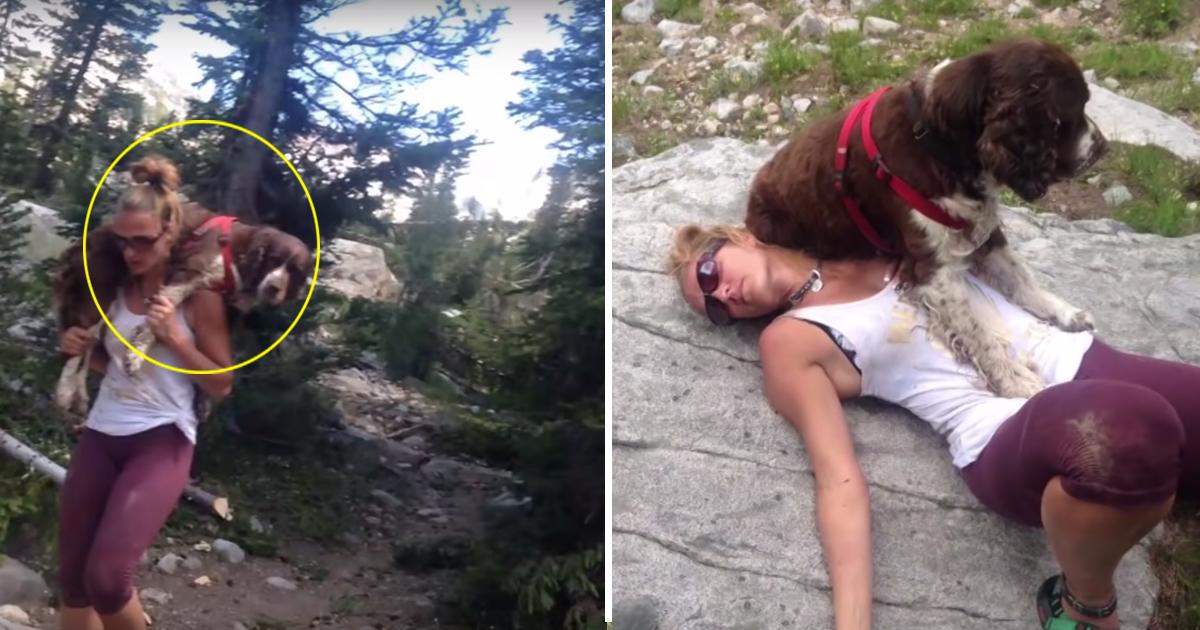 aaddda.jpg - Cette femme a porté un chien de 25 kilos sur ses épaules pendant 6 heures pour lui sauver la vie
