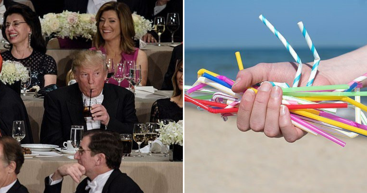untitled design 68 1.png - Trump Campaign Sold 10 Plastic Straws for $15 Because 'Liberal Paper Straws Don't Work'