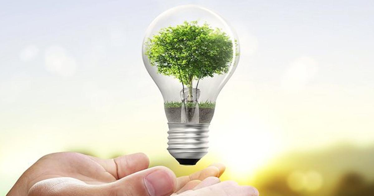 1a 1.jpg - 10 trucos ecológicos para una mejor vida