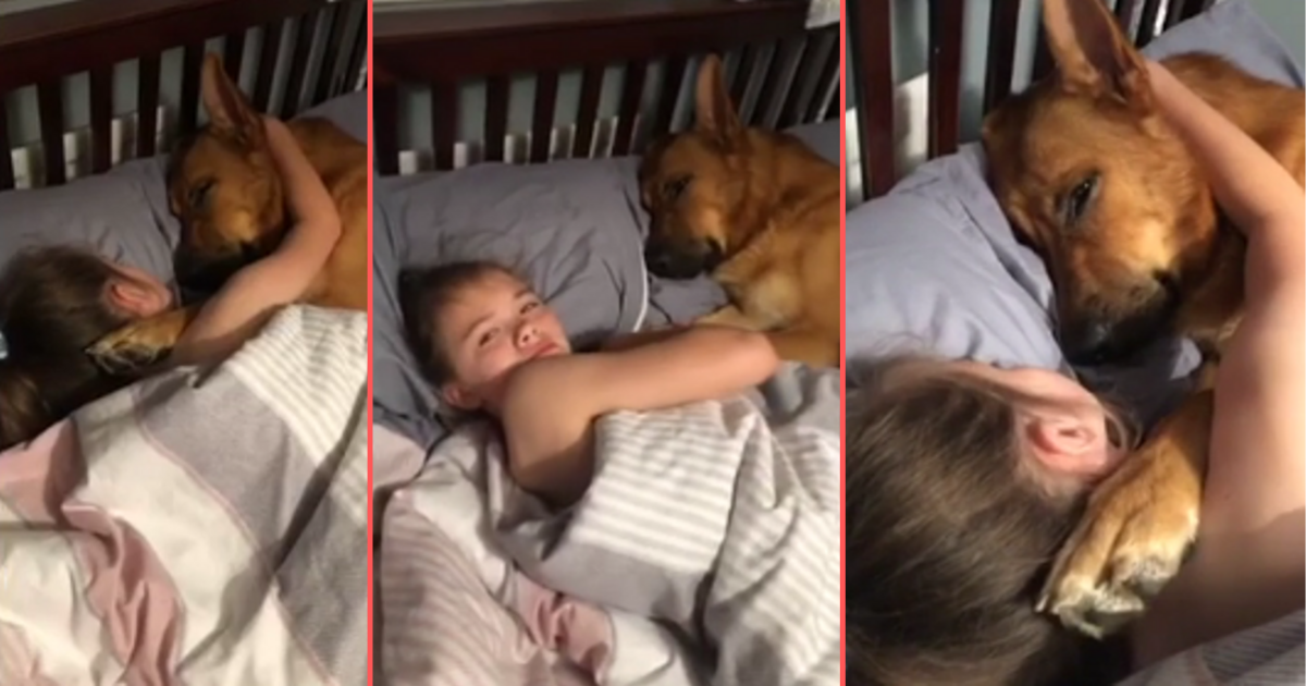 d6 11.png - An Adorable Video of Kid Choosing to Sleep Beside the Dog