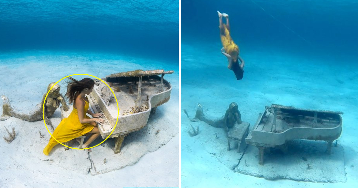 sa 1.jpg - Mesmerizing Video Of A Deep Sea Diver Playing Piano Under 20 Ft Down The Ocean