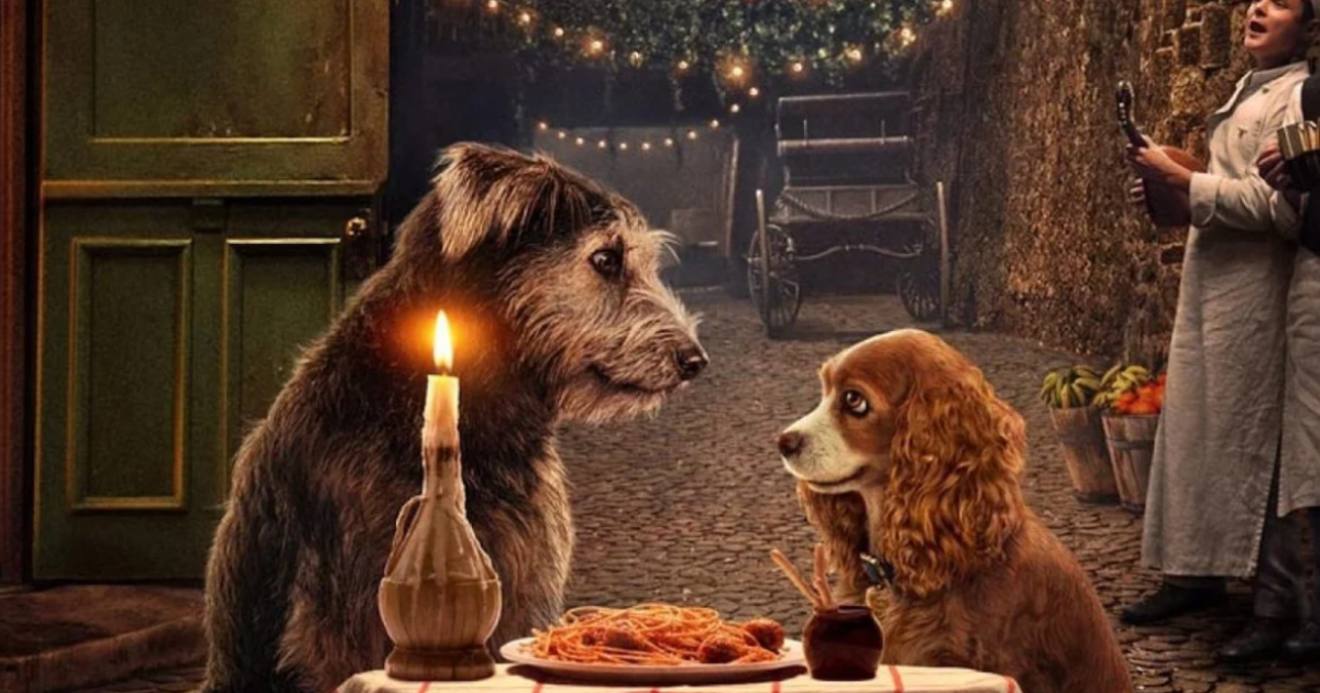 tramp.png - A Dog That Was Abandoned From A Shelter Will Feature In The New Lady And The Tramp Movie