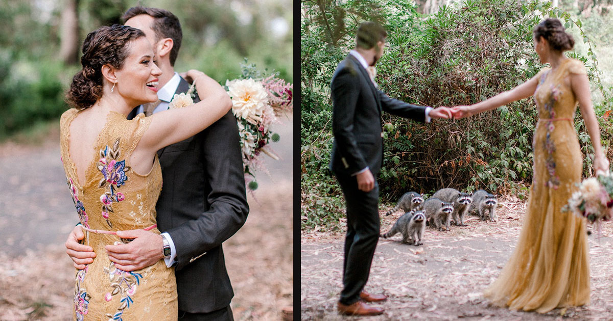 untitled 1 29.jpg - An Adorable Family Of Raccoons Crashed A Wedding Photoshoot