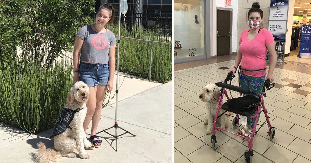 canine saves teen life.jpg - Canine Saves Life Of A Teen On A Daily Basis By Alerting Her Before Deadly Reactions