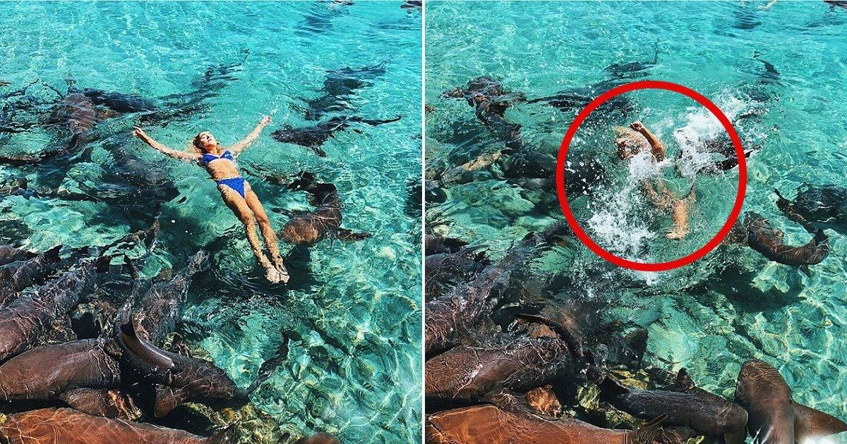 1 9.jpg - Es Modelo De Instagram Y Fue Atacada Por Un Tiburón Mientras Posaba Para Una Foto