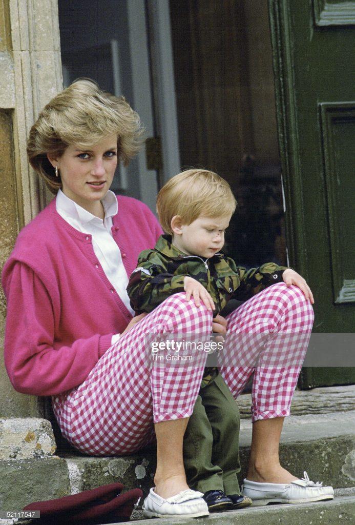 Diana And Harry Highgrove : News Photo