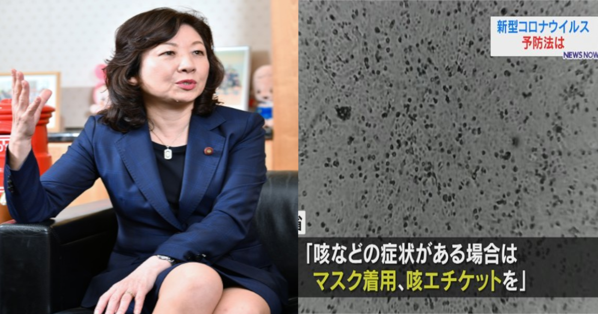 noda.png - 野田聖子氏、新型肺炎に頭を悩ませる…「長男はマスクだけでは守れない」⁈
