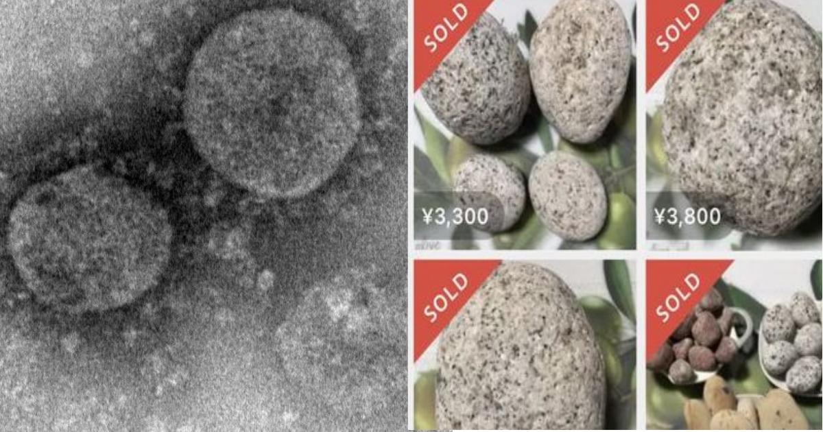ishi.png - 新型コロナウイルスに付け込み新手の詐欺が横行中!予防に効く「謎の石」が怪しさ満載の件