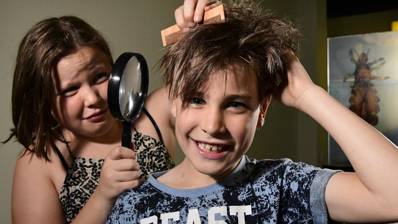 Coronavirus Australia: Head lice treatment Ivermectin kills COVID ...
