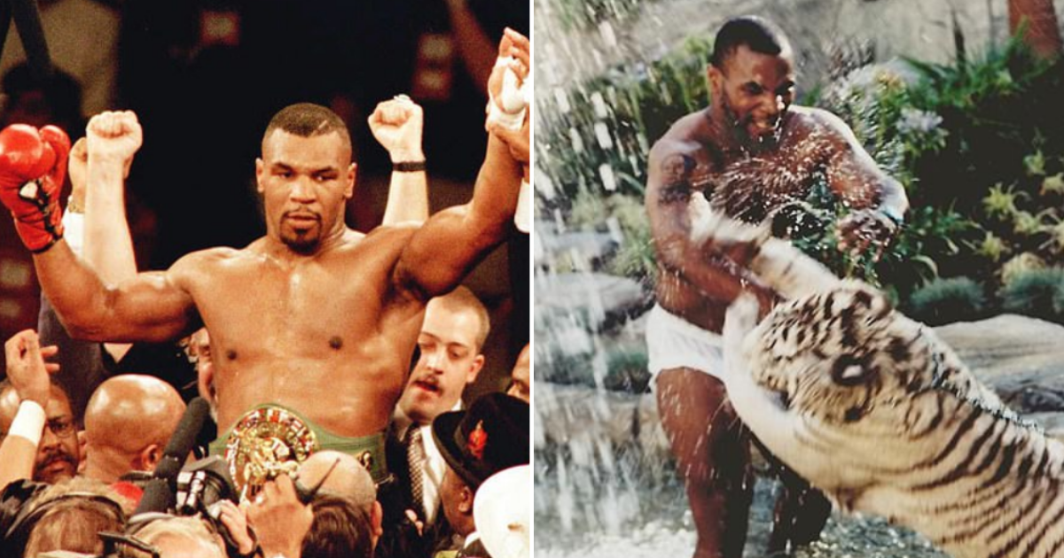 4 5.png - Mike Tyson, The Former Tiger King Revealed That He Regrets Owning Two Predators as Pets