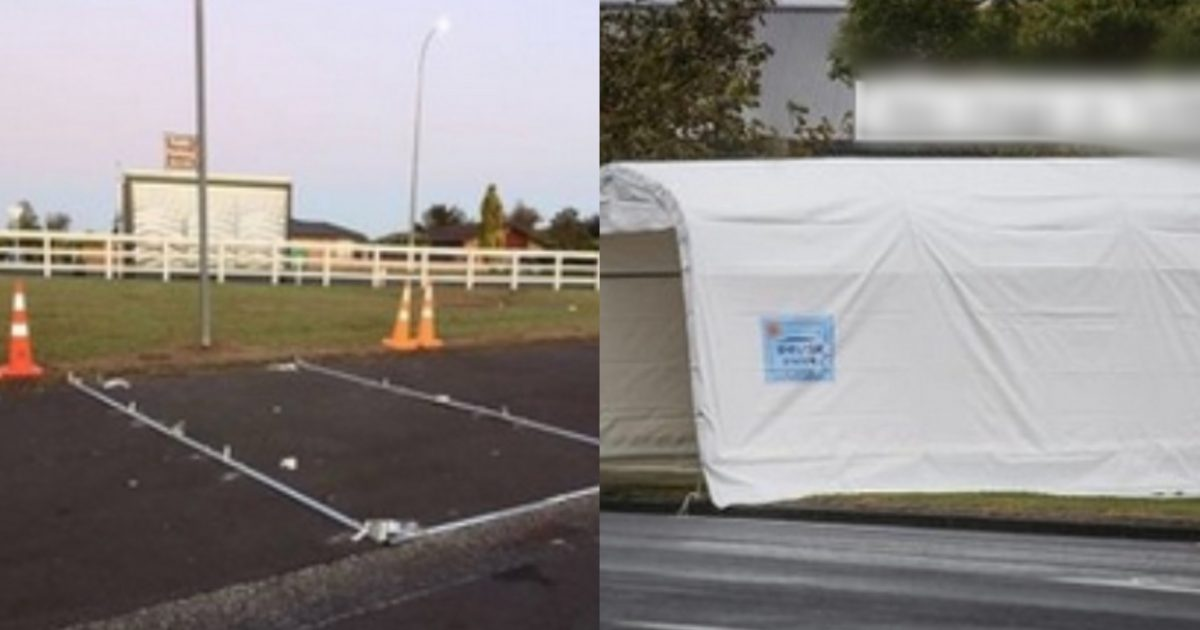 """6a955524 d4a9 4566 95c6 67171b8df721 e1585718178201.jpg - """"대체 이런 사고방식이 어떻게 가능한거지..?""""…현시각 뉴질랜드 코로나 바이러스의 '충격적인' 근황(사진)"""