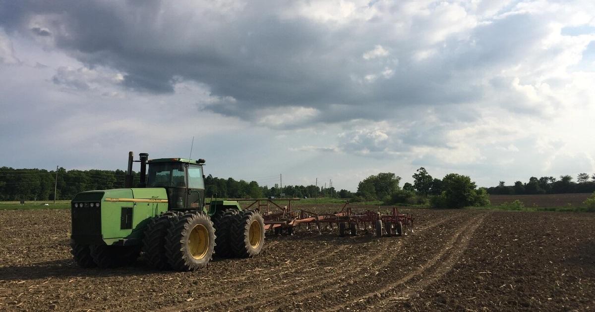 champ.jpg - Vidéo: Un agriculteur rend hommage aux soignants depuis ses champs