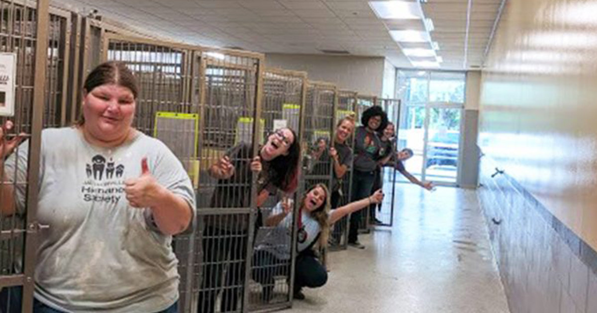 ec8db8eb84ac ec9db4eab1b8eba19c.jpg - Florida's Animal Shelter Celebrates First Ever Euthanasia-Free Moment!