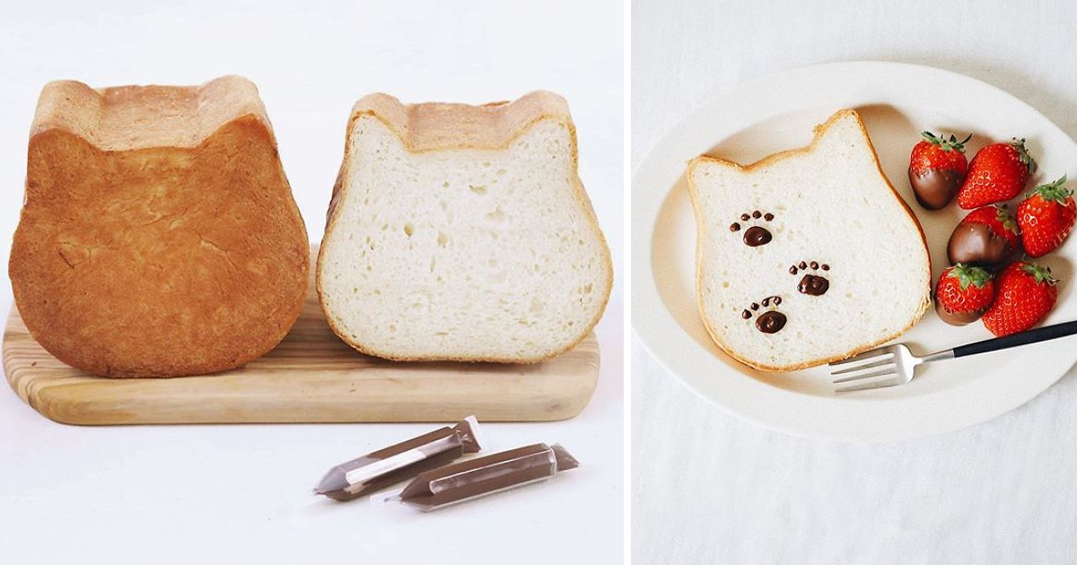 h.png - A Bakery Introduced Cat-Shaped Bread – And It Is Absolutely Lovable