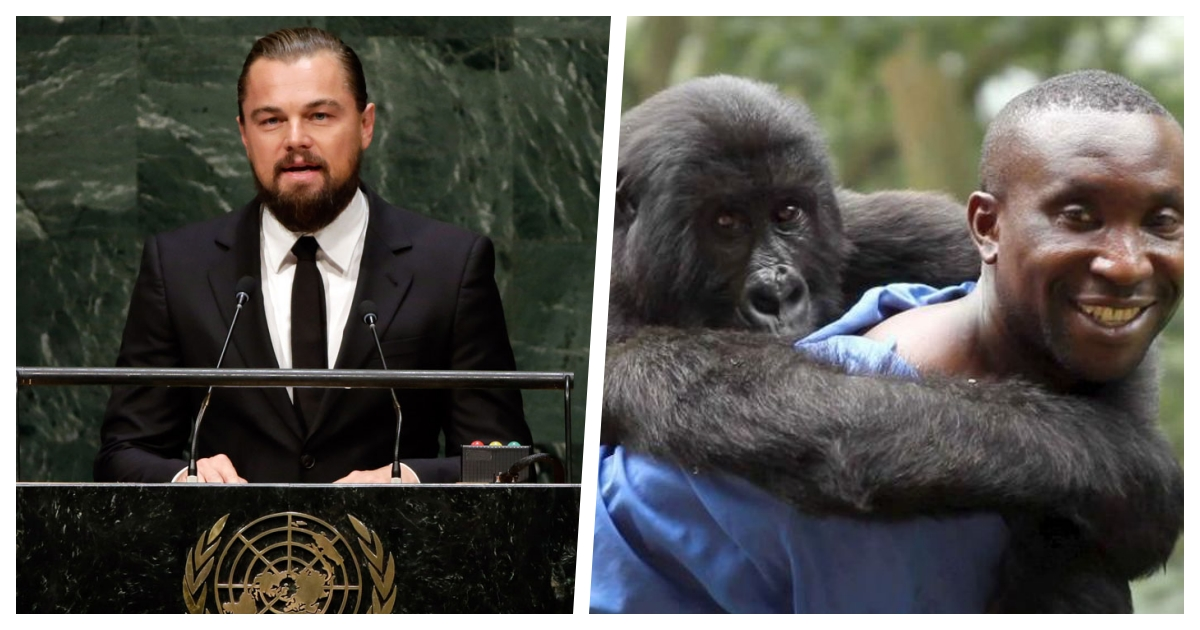 collage 43.jpg - Leonardo DiCaprio Joins Efforts To Support One of the Most Important Nature Reserves in Africa