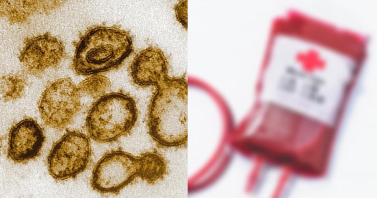 ktsuekigata.png - 新型コロナウイルスの感染の確率は血液型によってかなり違うという説は本当なのか?