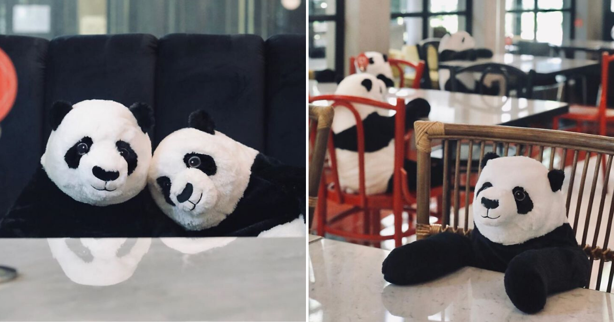 pandas5.png - Restaurant Comes Up With Genius Idea To Help Diners Feel Less Lonely While Social Distancing