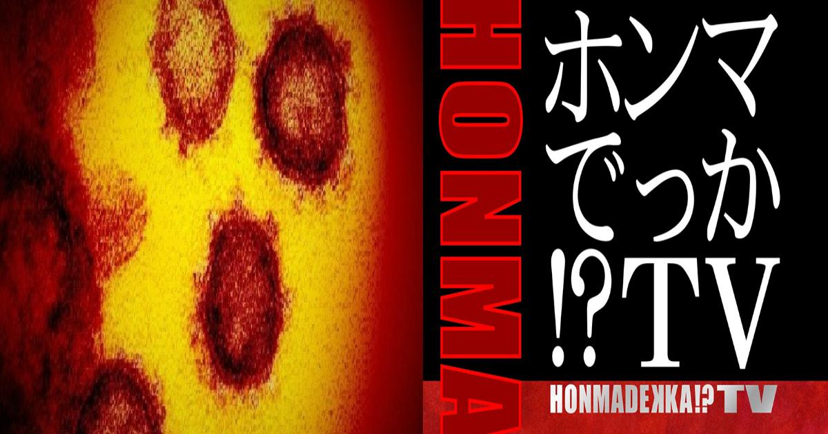 qq.jpg - 【話題】自宅で免疫力を高める方法?『ホンマでっかTV』で紹介された内容が「簡単」だと反響