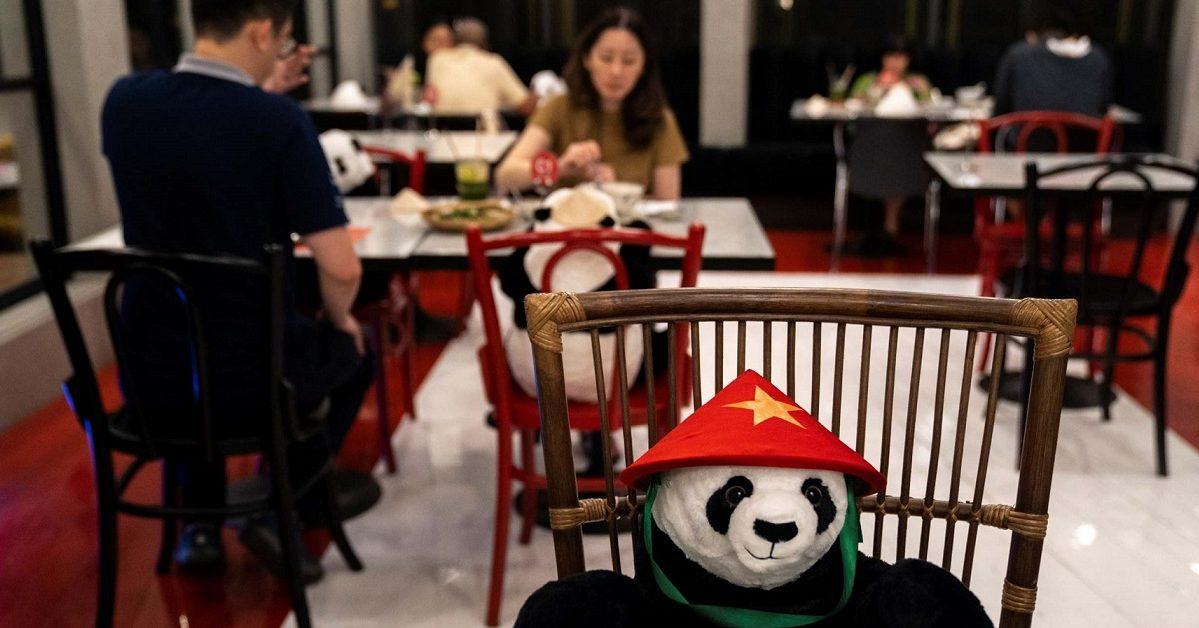 simplenews co uk e1589463586703.jpg - Des pandas en peluche pour respecter la distanciation sociale dans son restaurant
