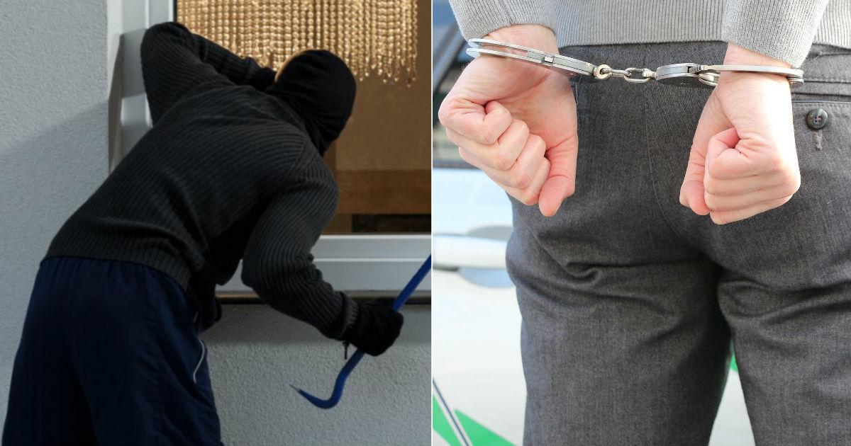 "tf.jpg - 한국인 용의자, '3억 7500만원'어치 절도 혐의로 일본 경찰에 붙잡혔다...""81건의 절도"""