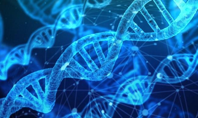 MEDI:GATE NEWS : 유전자 정보 공유시장, 개인 데이터 생태계 어떻게 ...
