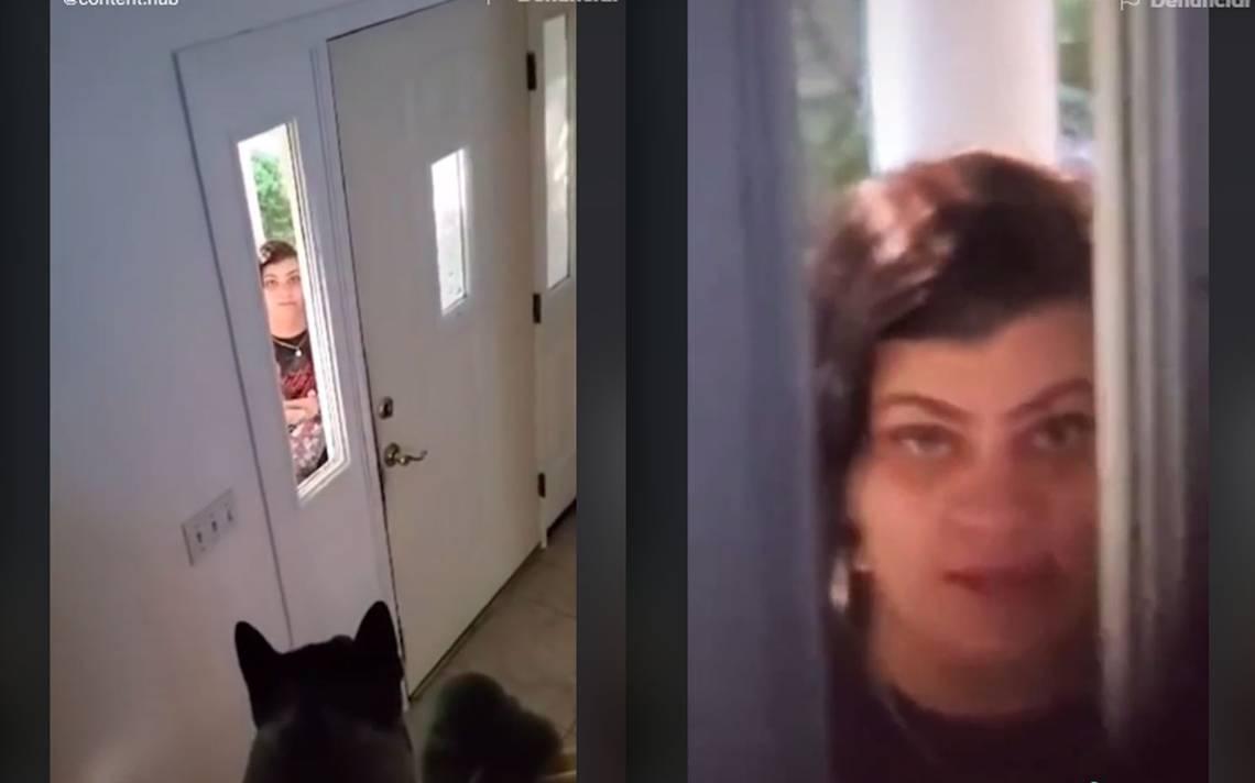 """Video] """"Tu perro no respirará mañana"""", amenaza vecina tras restringirle el  Wi-Fi - El Sol de San Luis"""