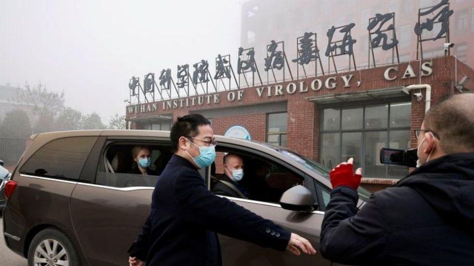 Resultado de imagen de OMS en Wuhan afirma que el coronavirus tiene un origen zoonótico