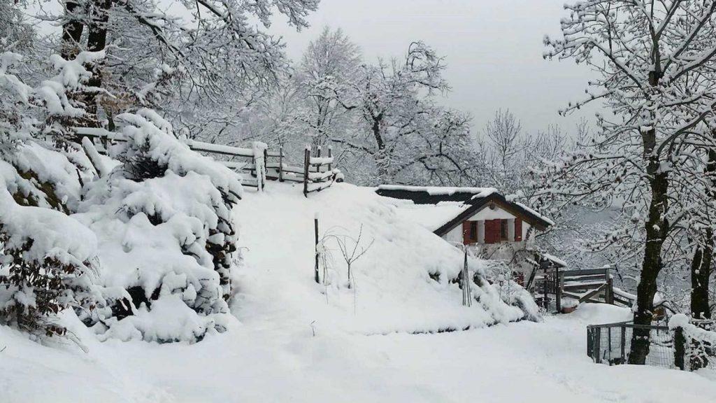 Más de 40 provincias están en alerta por nieve y viento | RTVE