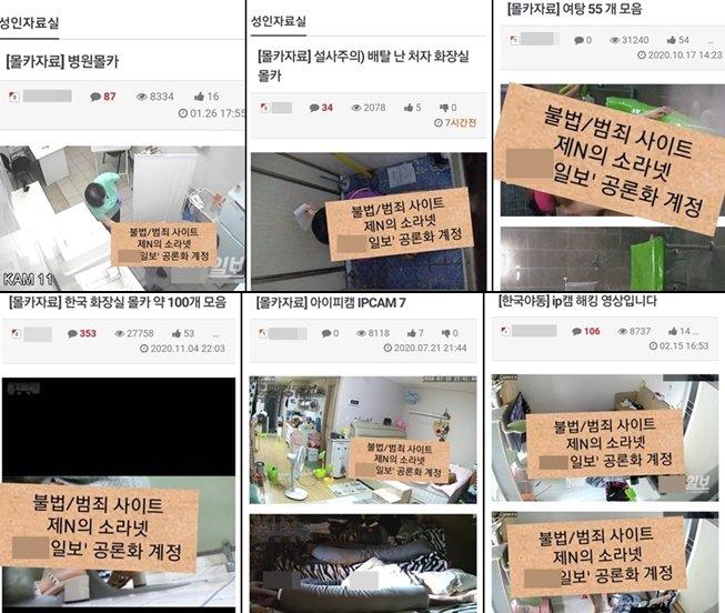 """일반인 성관계 몰카까지""""…불법촬영물"""