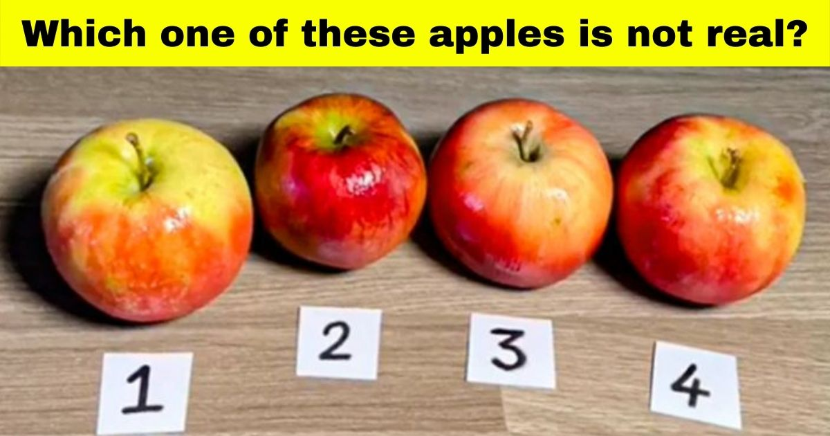 cake17.jpg - Can You Figure Out Which One Of These Apples Is NOT Real?