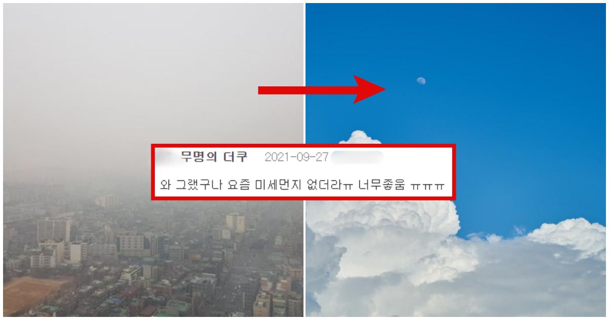 """collage 547.png - """"내년 3월까지는 하늘 푸르겠네?"""" 요즘 미세먼지 없이 공기 맑아진 이유"""