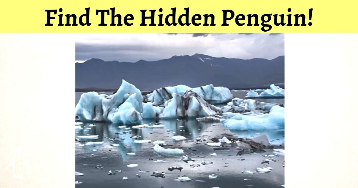 credit mind oddities.jpg - Can You Find A Penguin In The Photo Below? 99% Of Viewers Failed To Spot The Bird!