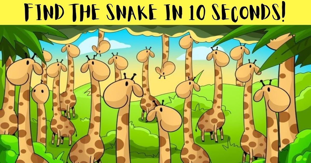 find the snake in 10 seconds.jpg - How Fast Can You Spot The Hidden Snake In This Picture? Only 10% Of Viewers Shall Succeed!