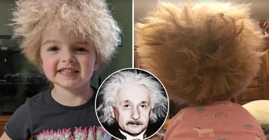 screenshot 2021 09 18 003057.png - Albert Einstein Of This Century! 6-Year-Old Lookalike Of Albert Einstein Found In Newcastle