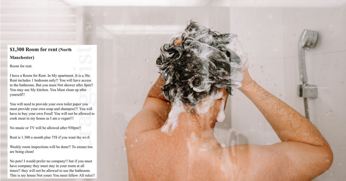 54.jpg - Wicked Flat Advert Mocked On Internet On His Ridiculous Rules For Tenants About Cooking And Showering