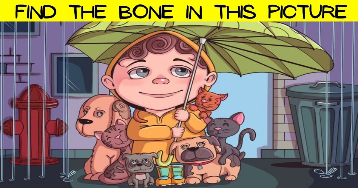 bone3.jpg - 90% Of People Can't Find The BONE In This Picture Of A Kid With Stray Animals! Can You Spot It?