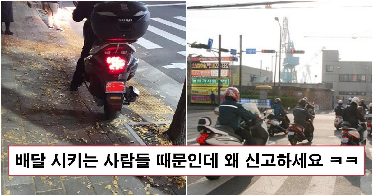 collage 176.png - 최근 배달원들이 청원까지 올리면서 오토바이 단속을 멈춰달라는 이유