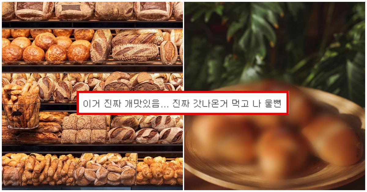 """collage 226.png - """"한개로 절대 못끝낸다..."""" 요즘 엄청나게 유행중인 빵"""