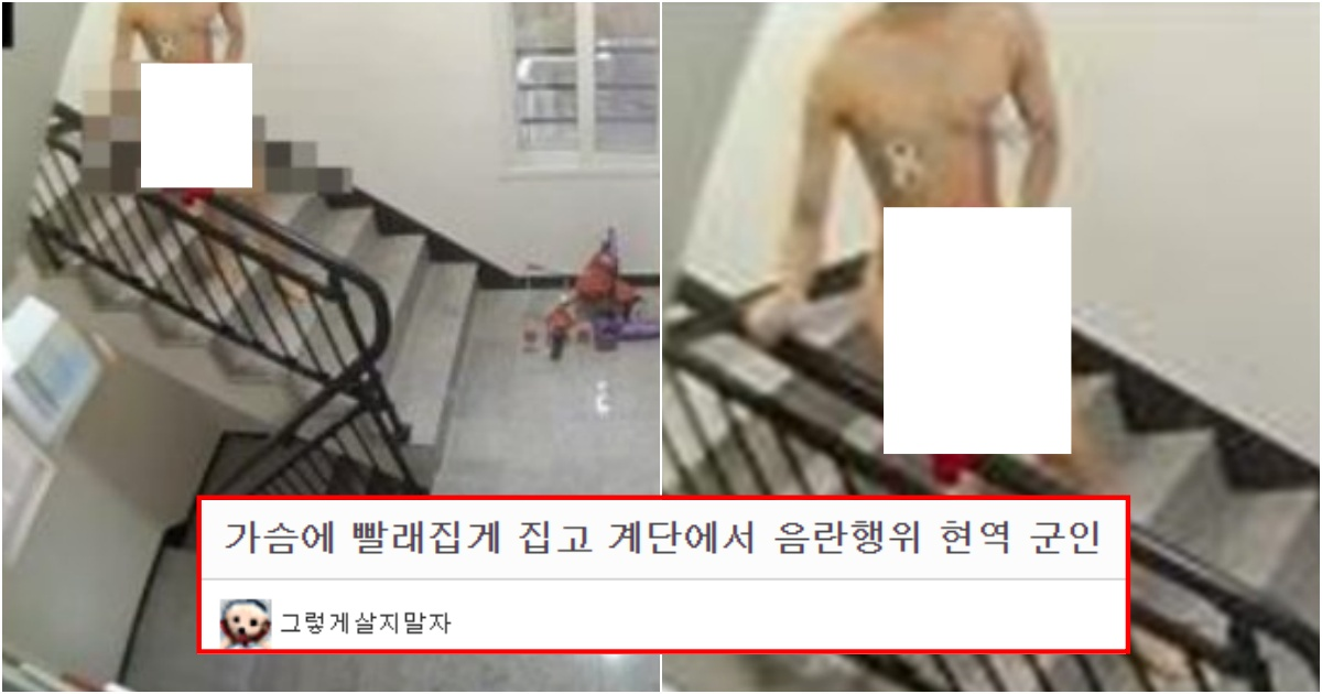 collage 374.jpg - 지금 저희 건물에 빨래집게 집고 '그 행동'하는 현역 군인 잡았습니다 (사진)