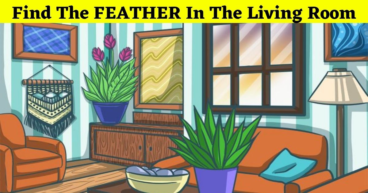 feather4.jpg - 90% Of Viewers Can't Find The FEATHER In This Picture Of A Living Room! But Can You Spot It?