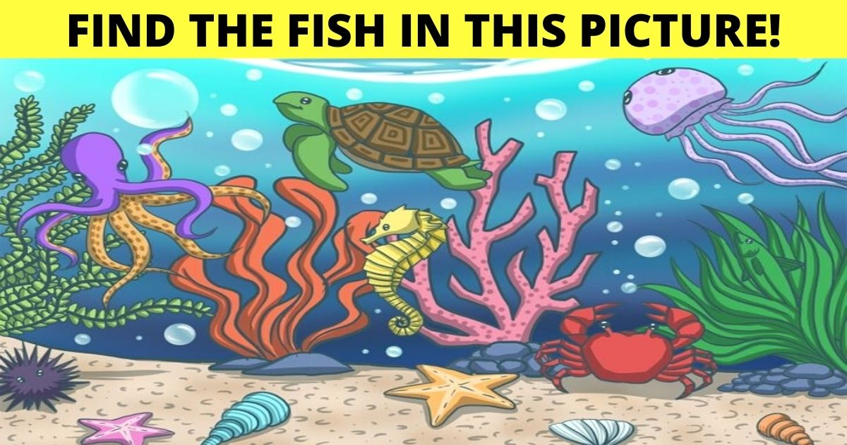find the fish in this picture.jpg - 90% Of Viewers Can't Spot The FISH In This Image! But Can You Find It?
