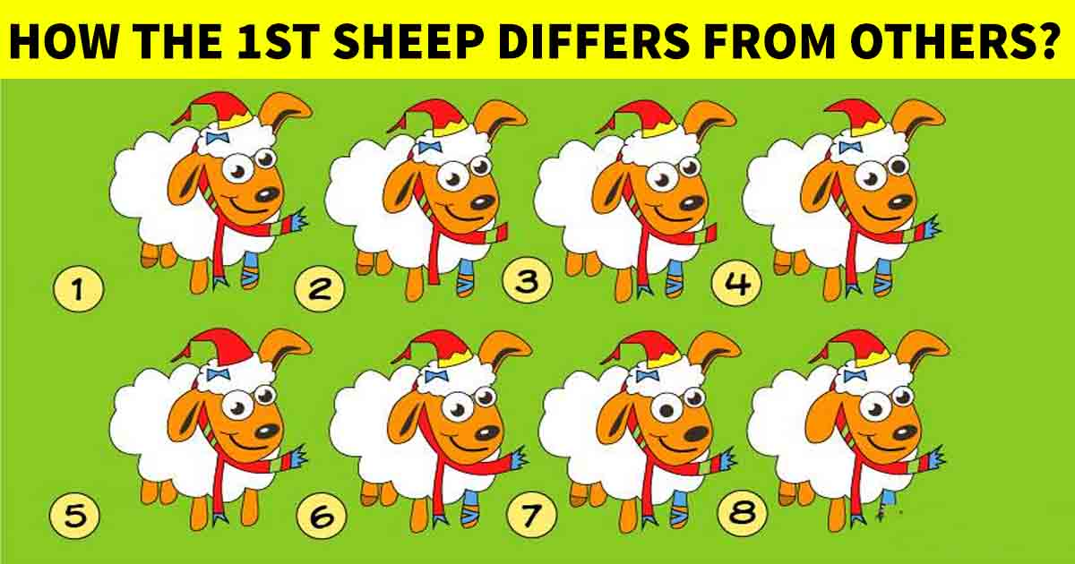q6 2 3.jpg - Here's A Test That's Designed For The Best! Can You Answer It Correctly?